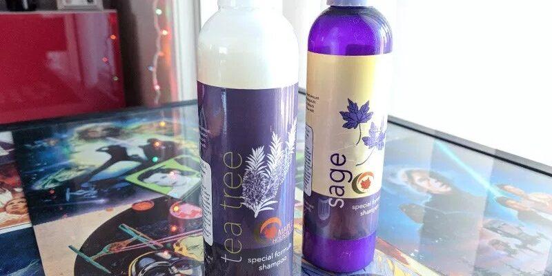 Best Dry Scalp Shampoo