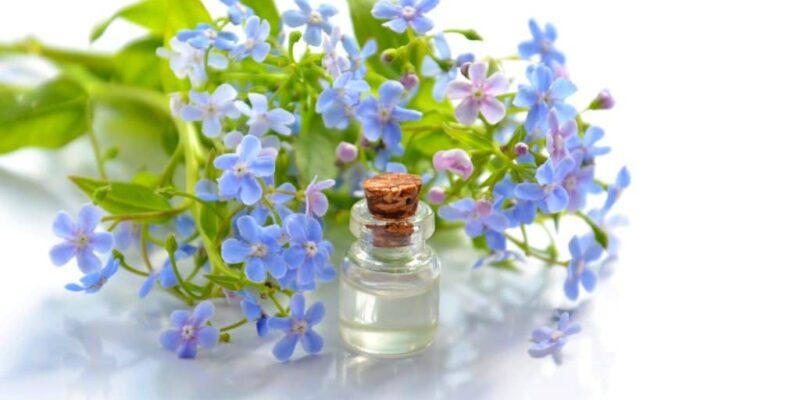 Best Essential oil for Headaches